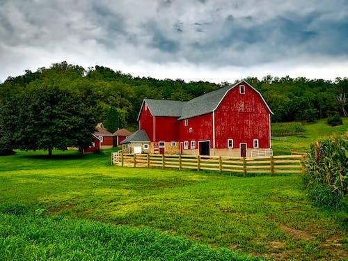 Kostenloses Stock Foto zu bauernhaus, bauernhof, bäume, farm