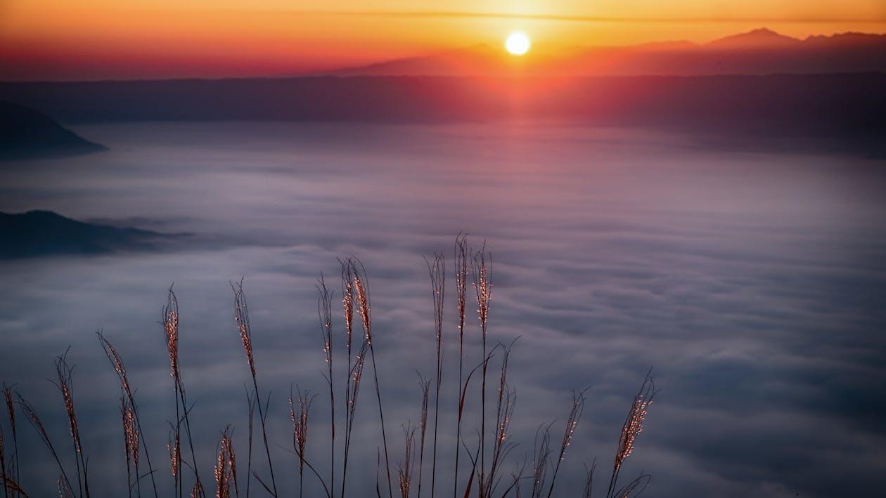 alba, cielo, litorale