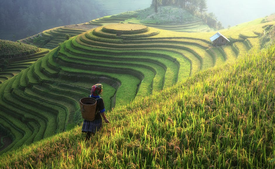 agriculture, asia, canyons