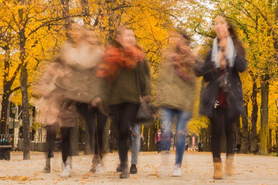 Group of People Walking Under the Orange Tree
