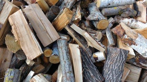Gratis stockfoto met close-up, gehakt hout, hout, log