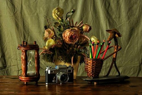 çiçek, Çiçek açmak, Çiçekler, kamera içeren Ücretsiz stok fotoğraf