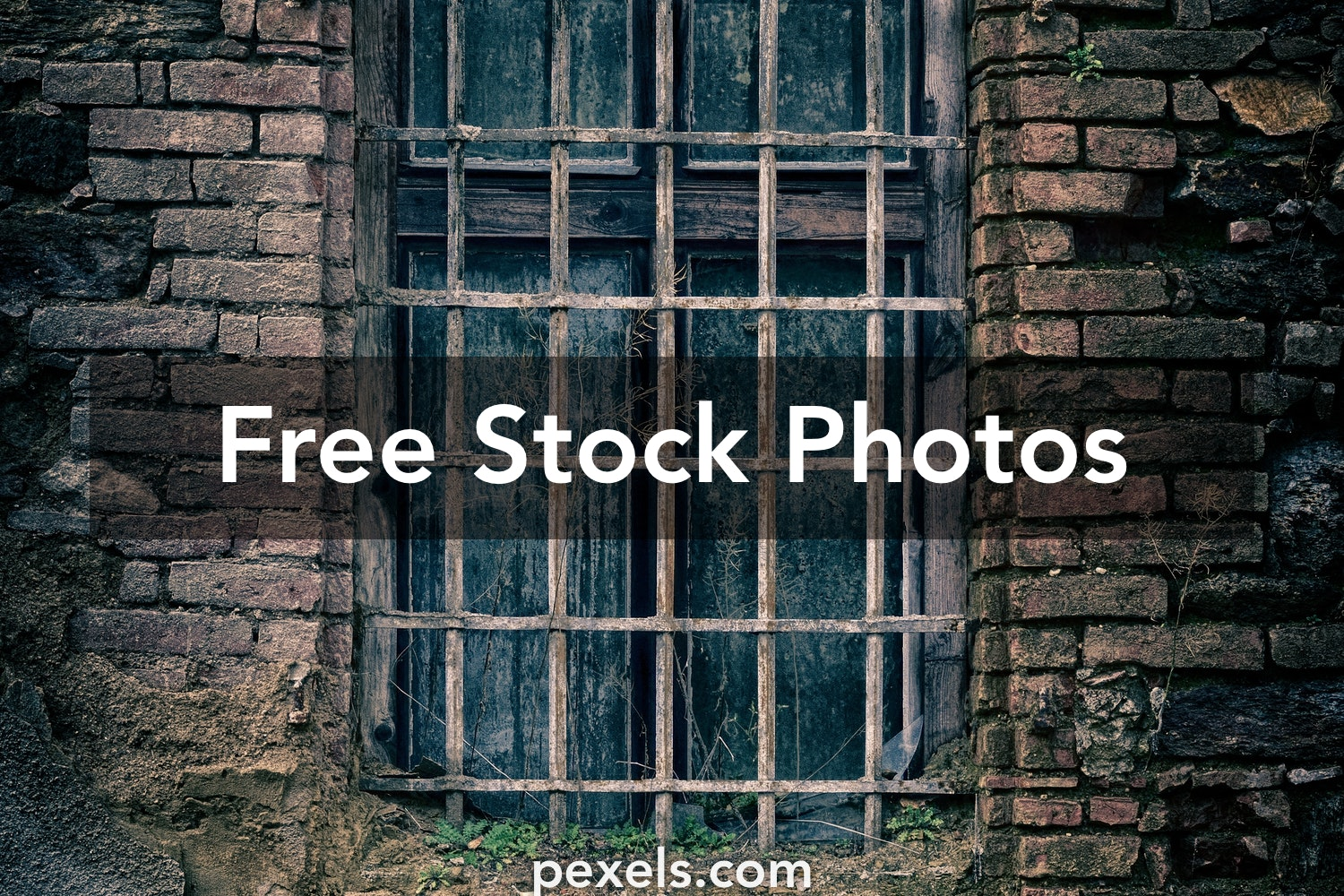 1000 Great Cb Edit Background Photos Pexels Free Stock Photos