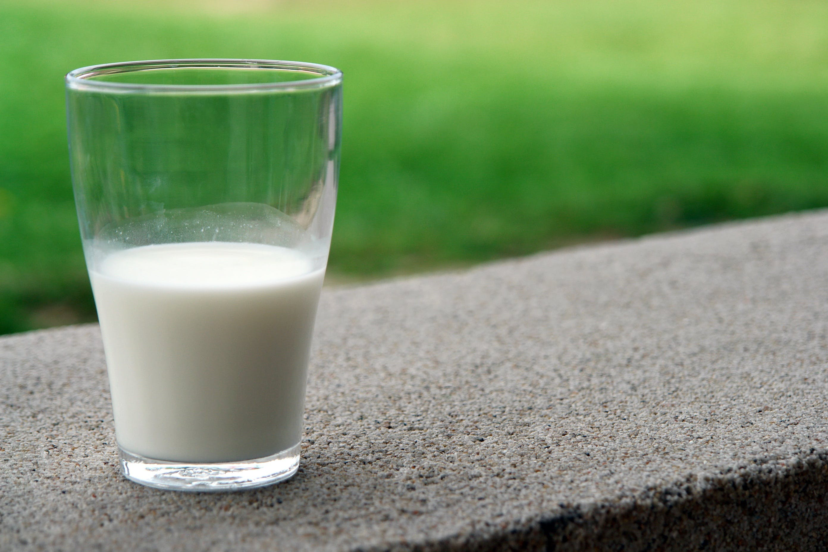 Бесплатное стоковое фото с здоровый, кальций, молоко, молочный