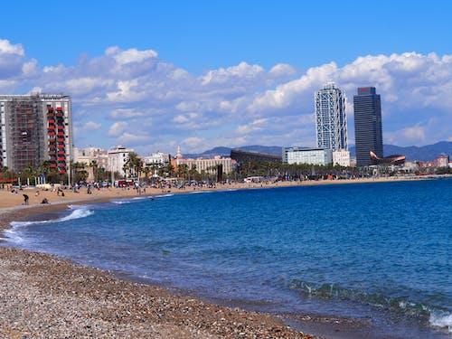 巴賽隆納, 海洋, 海灘 的 免费素材照片