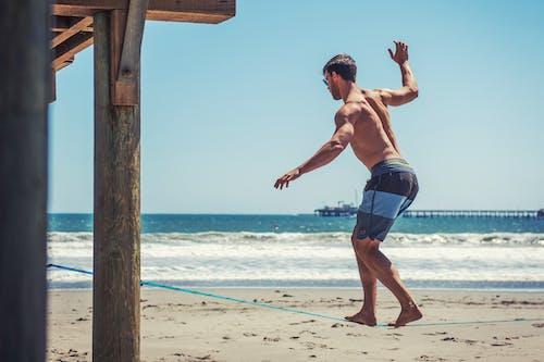 slackline, 享受, 人, 岸邊 的 免费素材照片