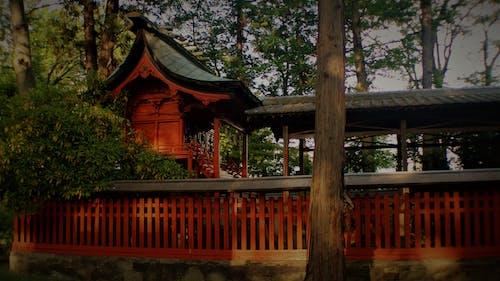 佛寺, 日本文化 的 免費圖庫相片