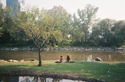 Darmowe zdjęcie z galerii z drzewa, dziewczyny, relaks, rzeka
