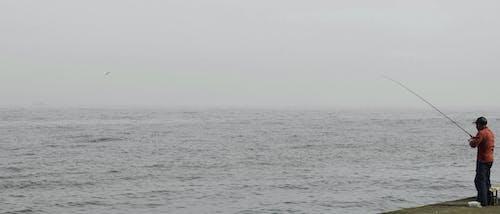 Kostenloses Stock Foto zu ansteckend, dock, fisch, fischer