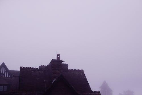 Kostenloses Stock Foto zu architektur, nebel, neblig