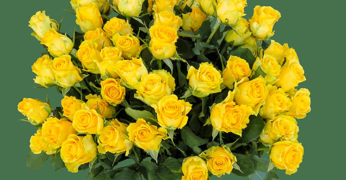 Открытки с букетами желтых роз, открытки