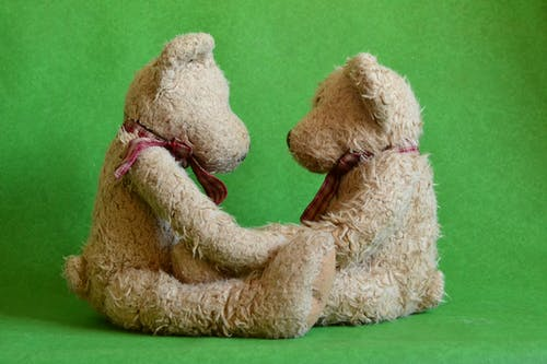 Základová fotografie zdarma na téma hračky, medvídek, plyšoví medvídci, roztomilý