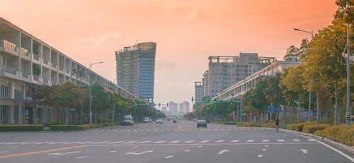 거리, 도시, 도심의 무료 스톡 사진