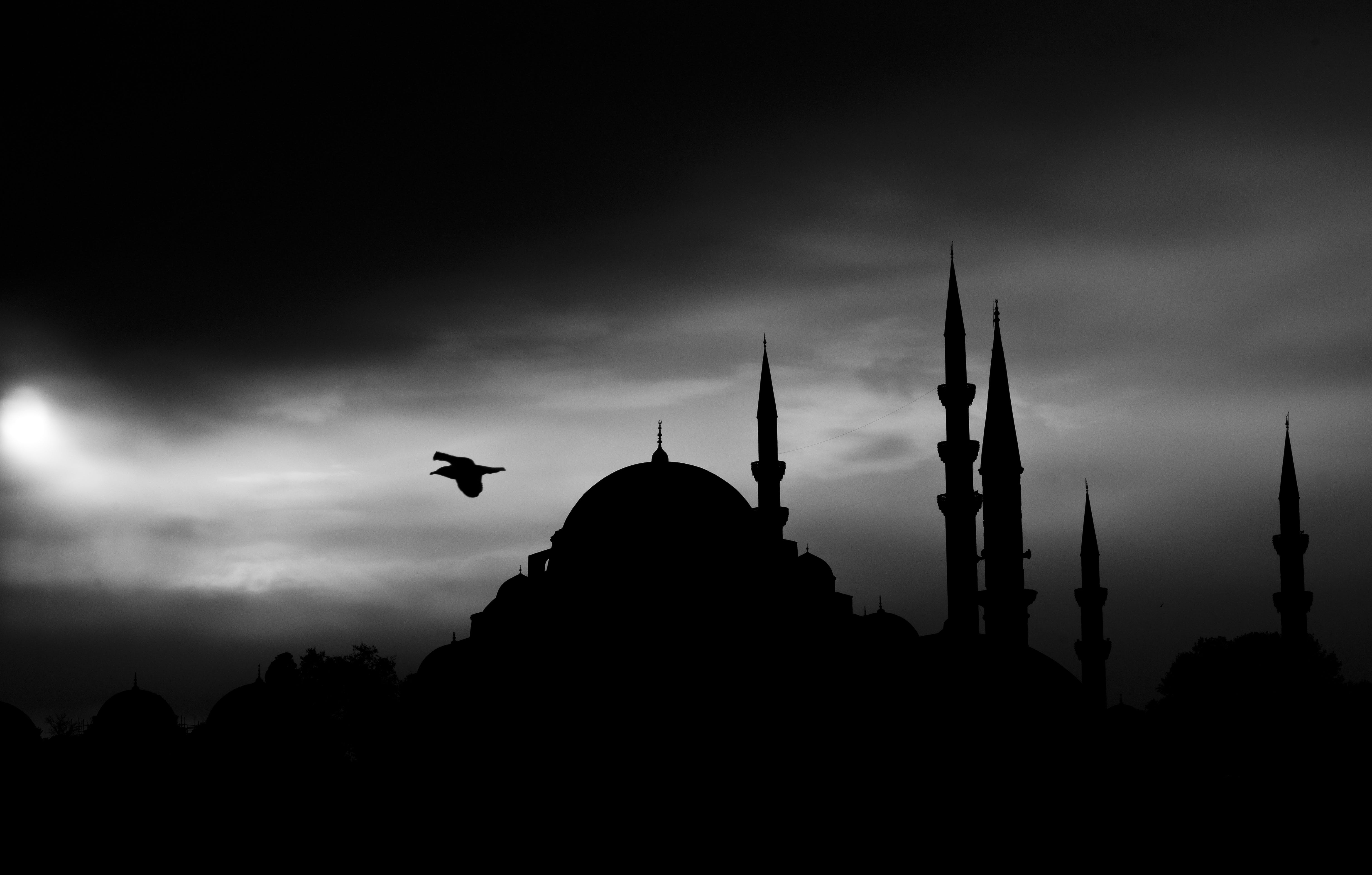 Grayscale Photography of Bird Flying Above Dome Building