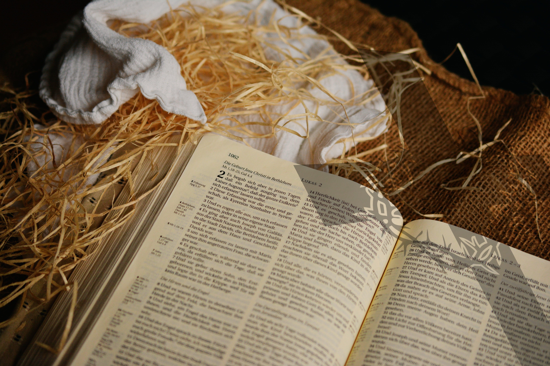 bibel, buch, business