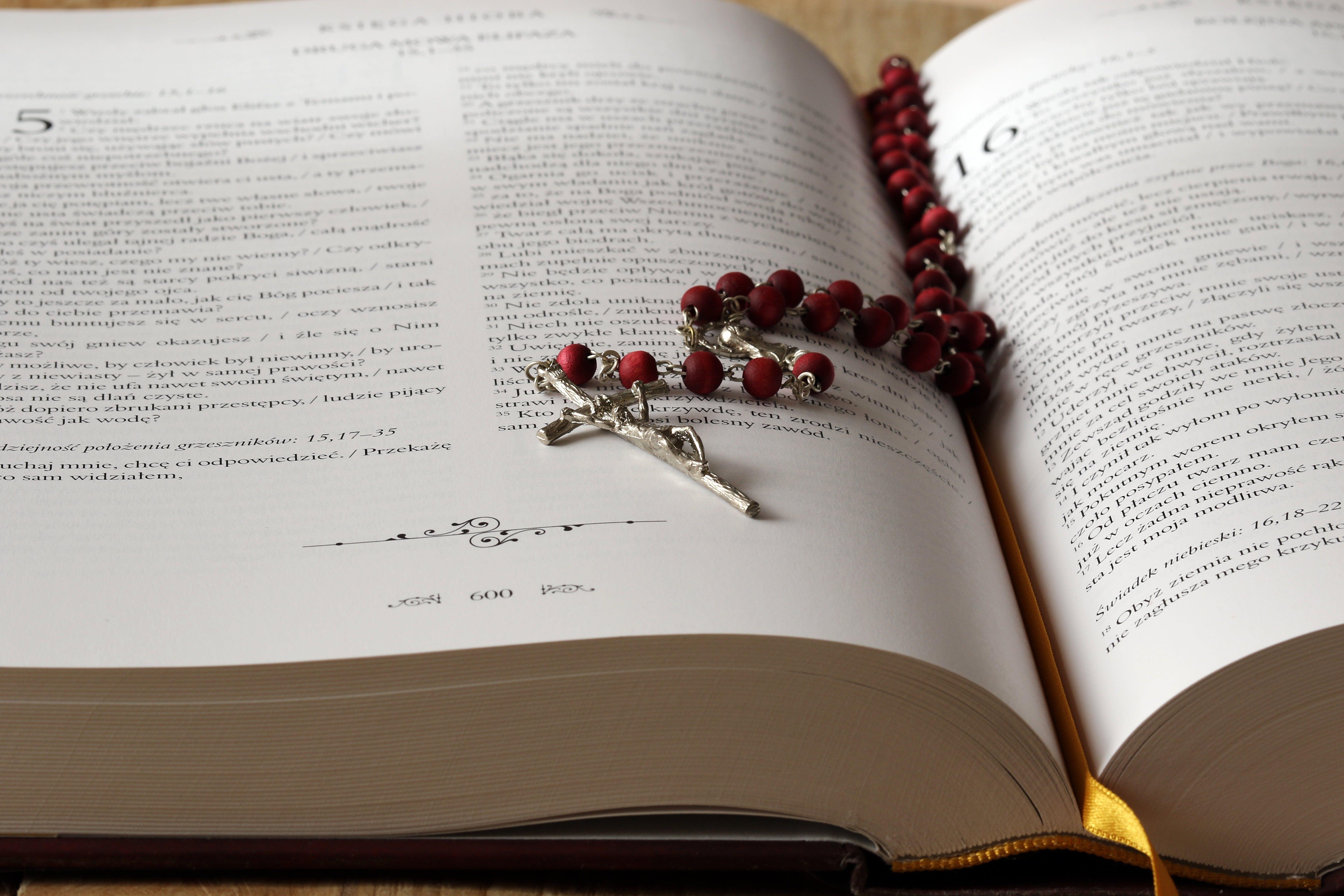 Kostenloses Stock Foto zu ausbildung, bibel, christentum, daten