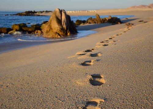 ビーチの足跡岩の無料の写真素材
