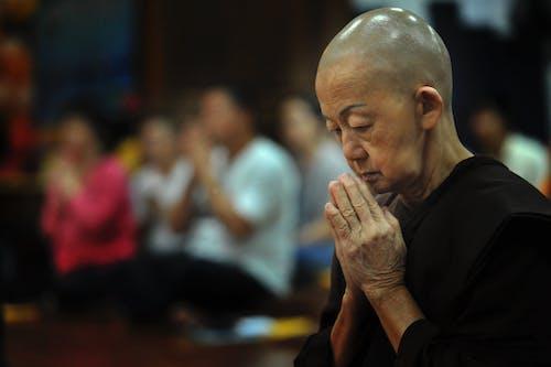 Foto profissional grátis de admiração, adulto, borrão, budismo
