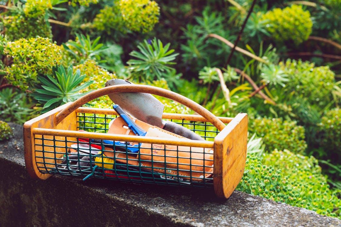 Gardening Tools On Wooden Basket
