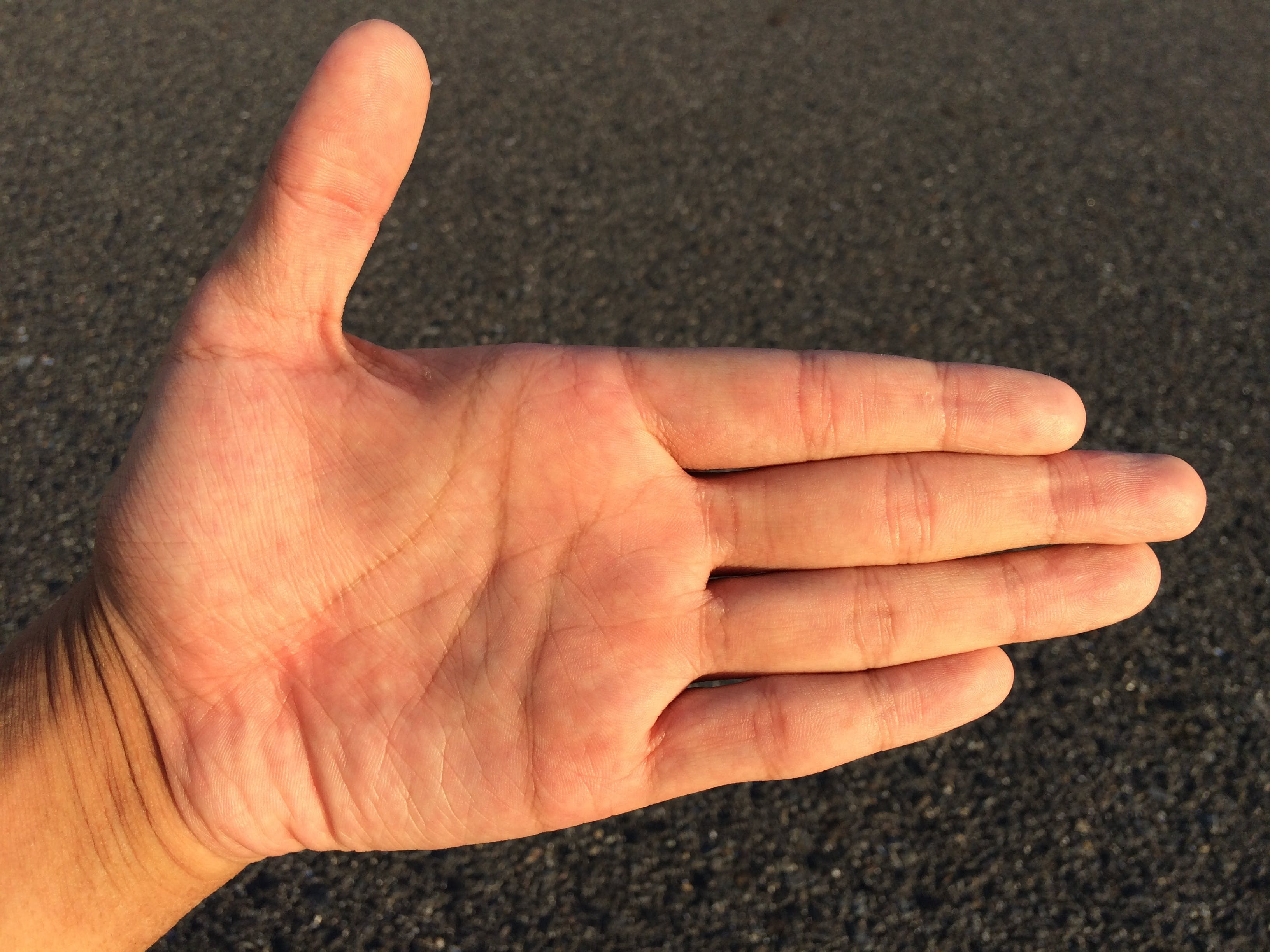 Person Showing His Left Human Palm