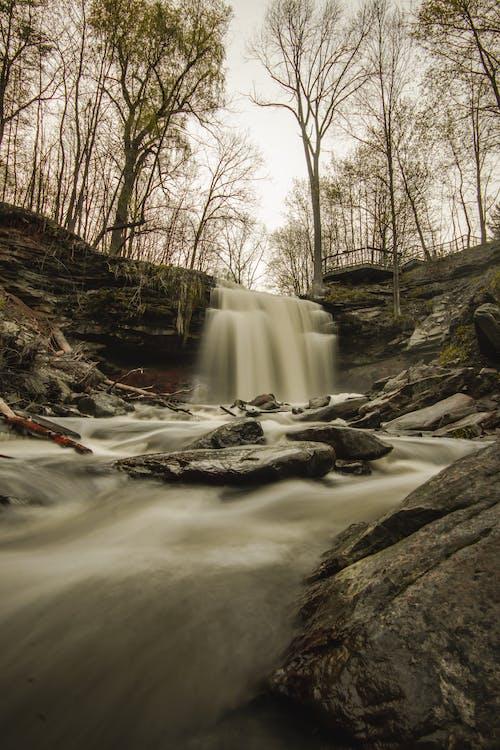 Free stock photo of waterfall