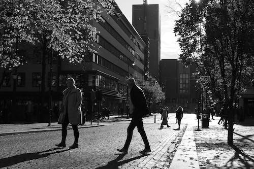 Free stock photo of urban photography