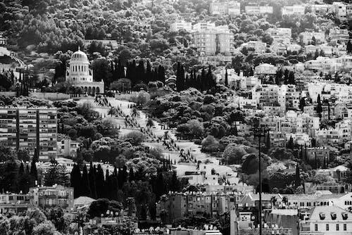 Foto stok gratis foto, haifa, Israel, kota