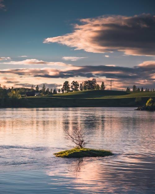 Foto d'estoc gratuïta de a l'aire lliure, arbres, camp d'herba, cel
