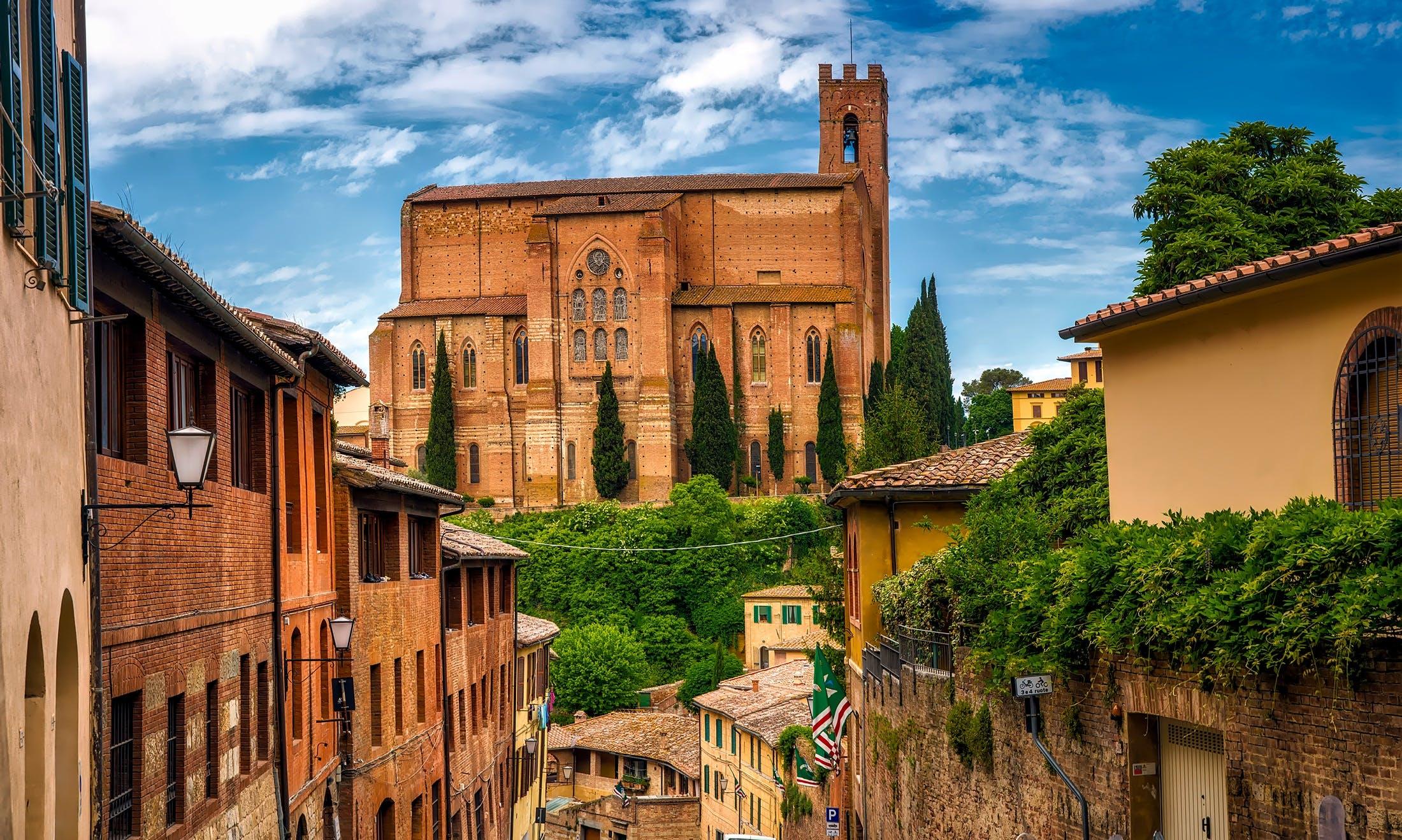 Foto profissional grátis de ancião, arquitetura, árvores, basílica de san domenico