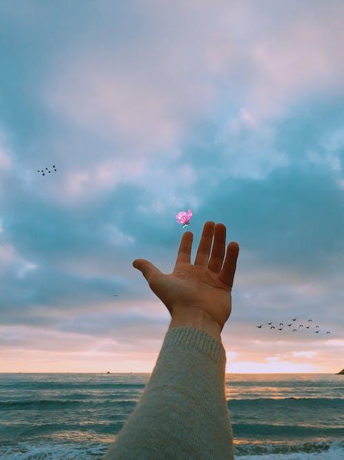 Δωρεάν στοκ φωτογραφιών με άνθρωπος, γαλάζιος ουρανός, διάθεση, ηρεμία
