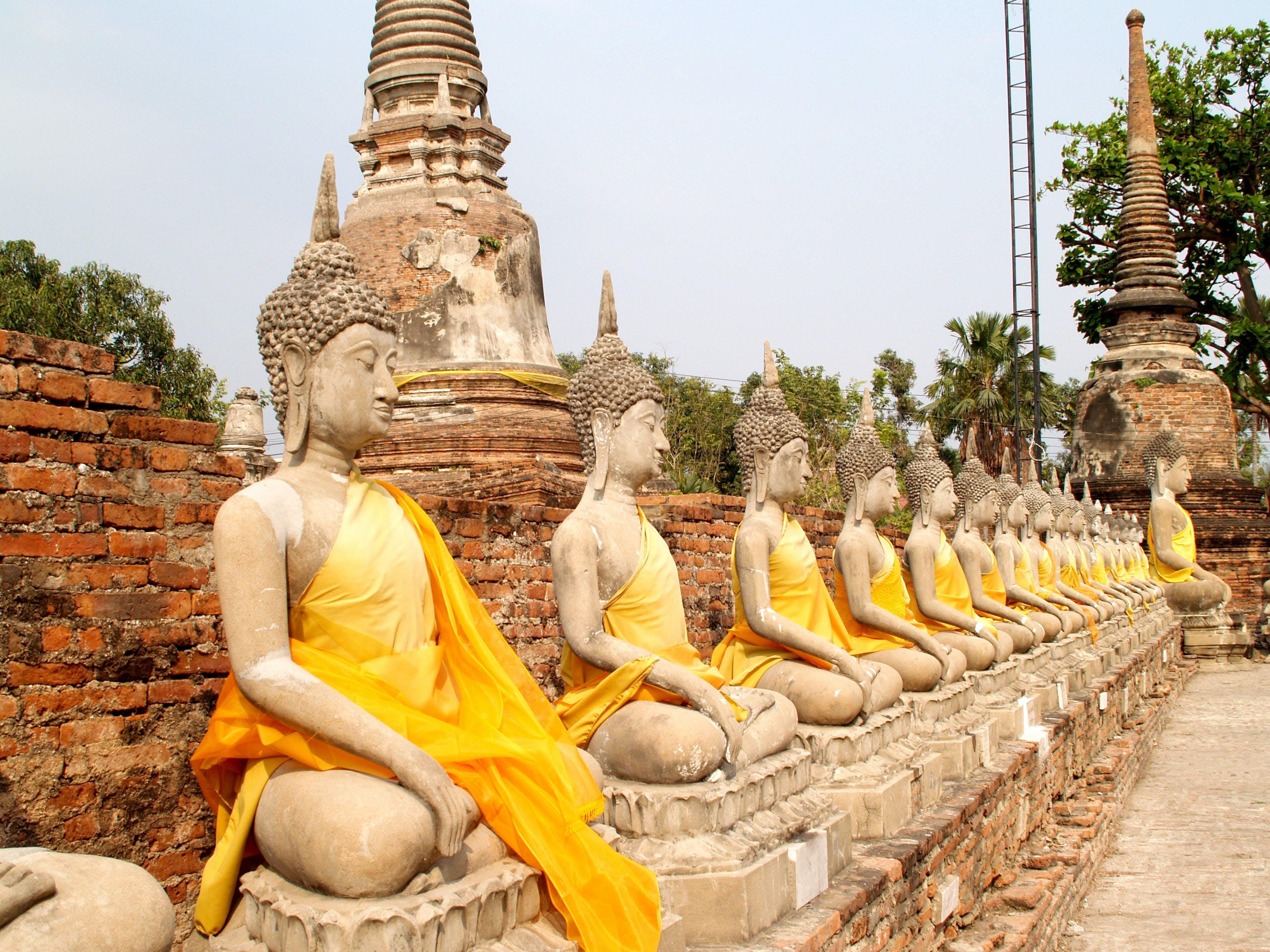 Line of Buddha Statues