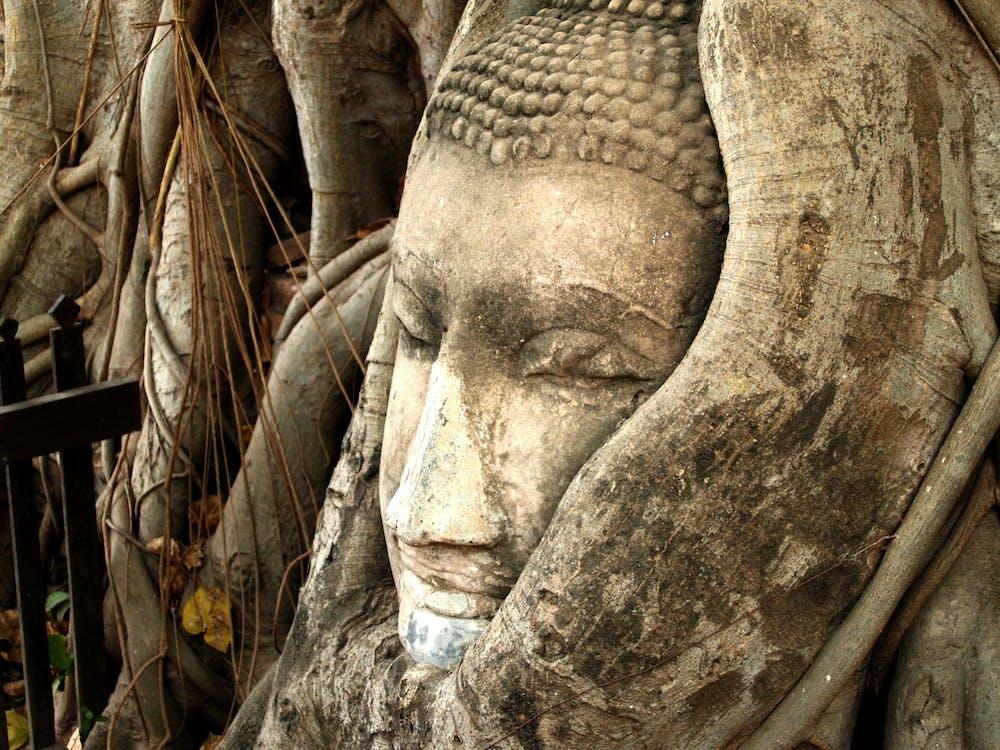 Immagine gratuita di antico, arte, Asiatico
