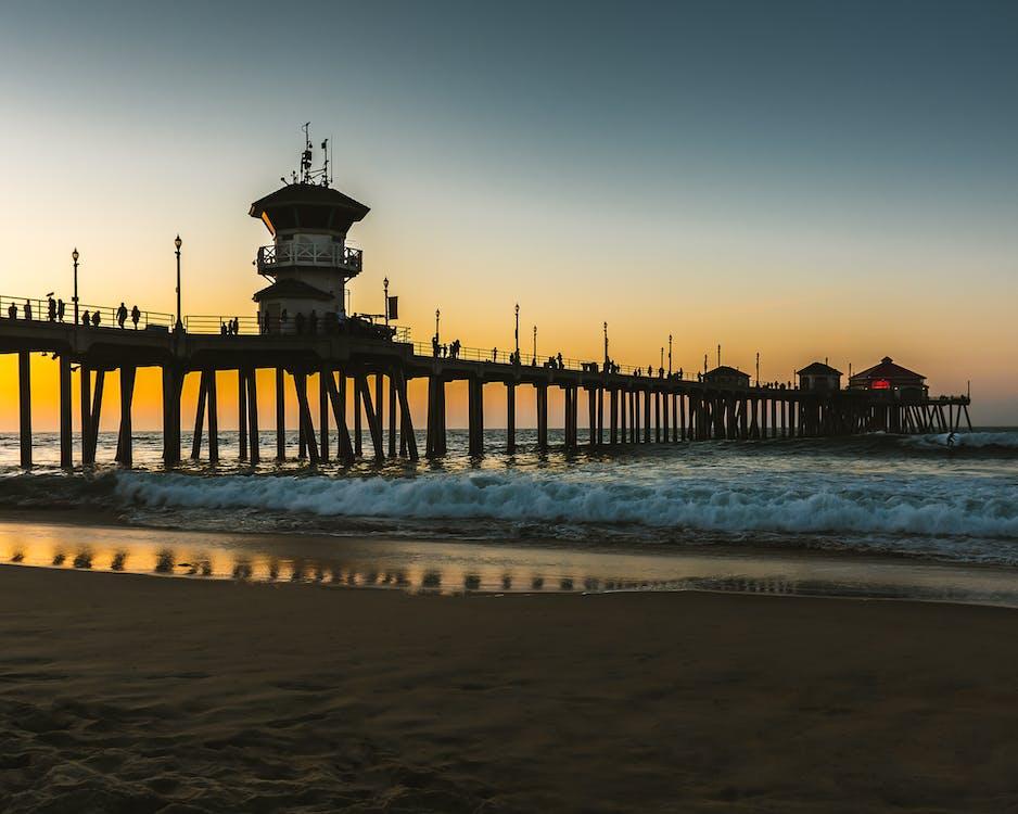 剪影, 岸邊, 日出