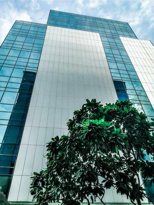 Gratis stockfoto met architectueel design, architectuur, boom, financiën