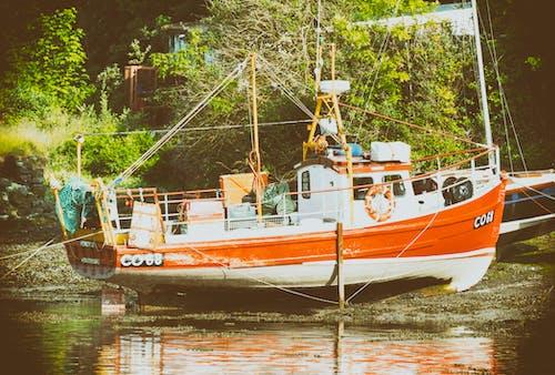 Free stock photo of boat, fishing, trawler