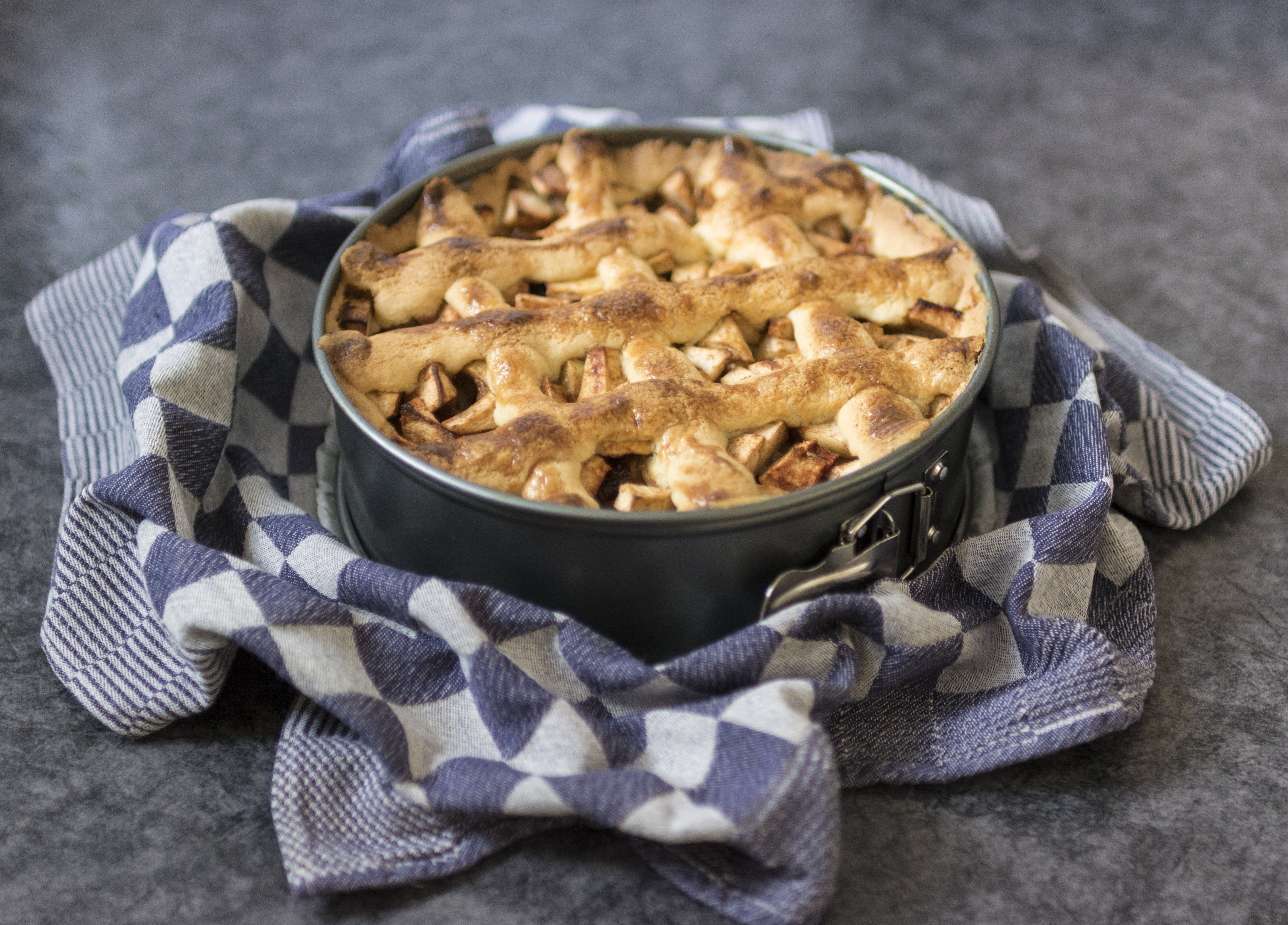 Baked Pie on Gray Metal Container