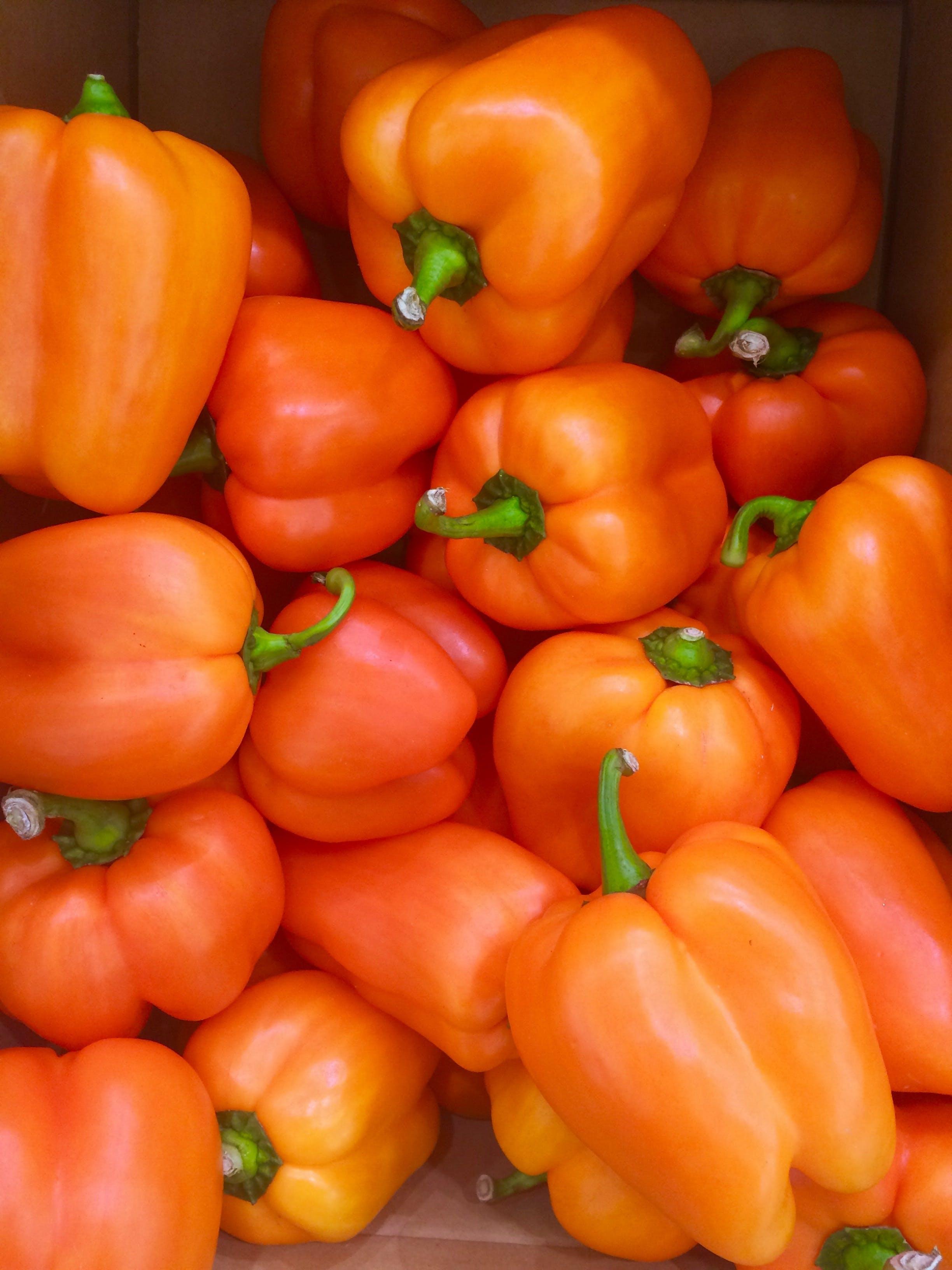 Free stock photo of vegetables, orange, green, supermarket