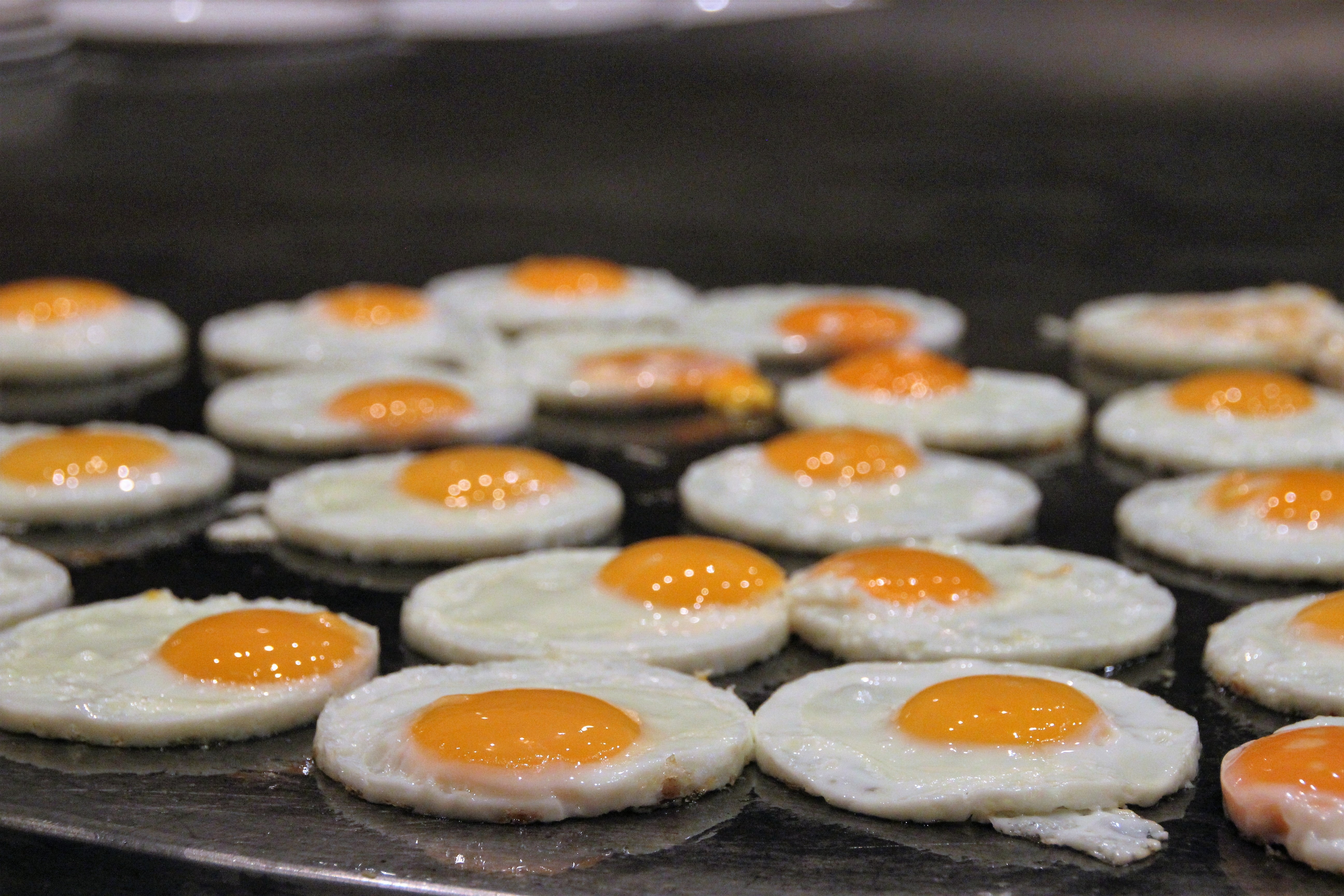 Sunny Side Up Eggs On Griddle 183 Free Stock Photo