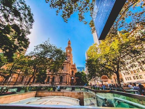 Kostenloses Stock Foto zu architektur, aufnahme von unten, australien, bäume