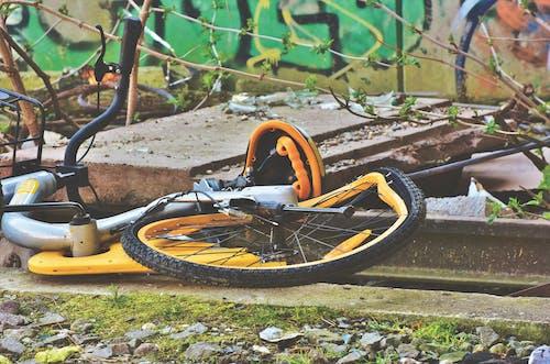 คลังภาพถ่ายฟรี ของ ขยะ, จักรยาน, ป่าช้ารถ