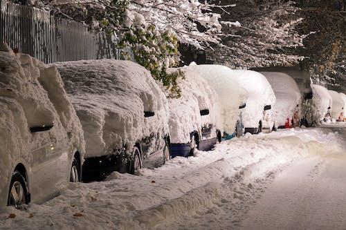 Foto profissional grátis de árvores, automóveis, coberto de neve, com frio