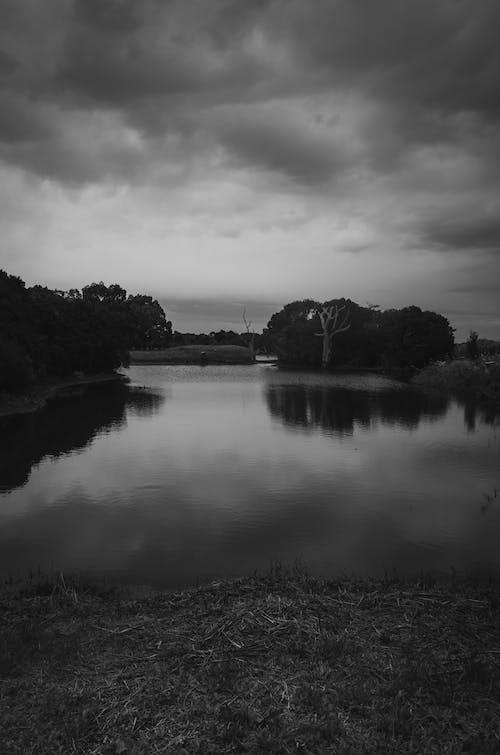 구름, 모노톤의, 야외, 연못의 무료 스톡 사진