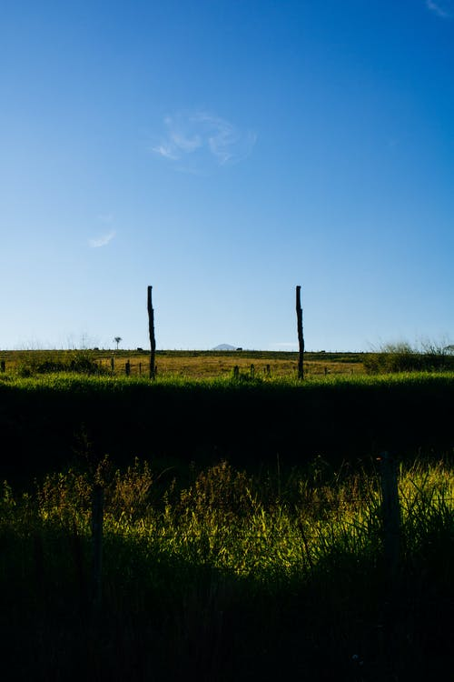 Gratis arkivbilde med åker, dyrket jord, dyrket mark, gård
