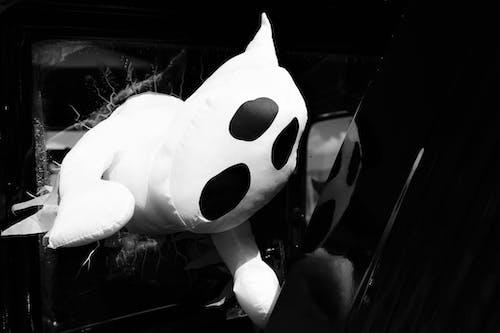 Immagine gratuita di bianco e nero, concentrarsi, fantasma, giocare