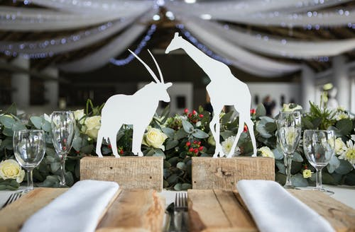 Two White Napkins Across White Silhouette of Animals