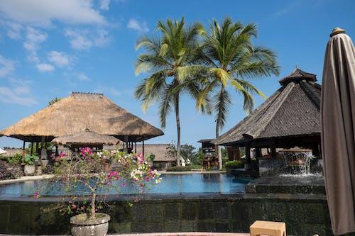 Free stock photo of holiday, island, travel