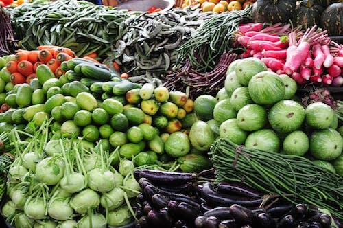 Gratis arkivbilde med farben, fersk grønnsak, friske farger, grønn