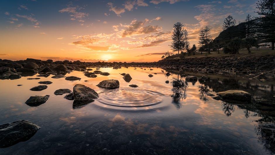 New free stock photo of dawn, nature, sunset