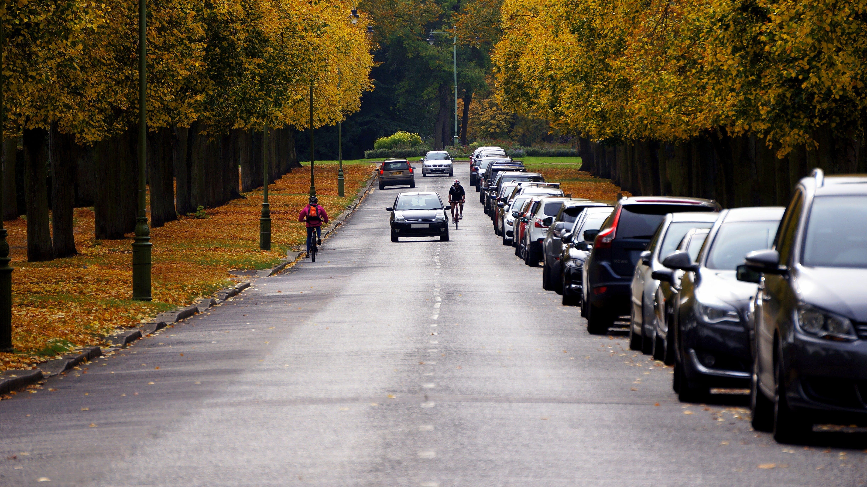 Безкоштовне стокове фото на тему «їздити, автомобілі, асфальт, дерева»