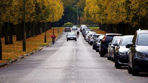 Gratis arkivbilde med asfalt, biler, kjøre, kjøretøy